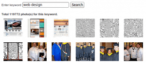 jQuery flickr image search